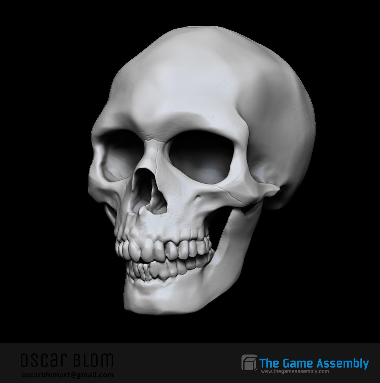 Oscar blom skull