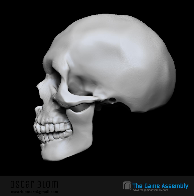 Oscar blom skullside