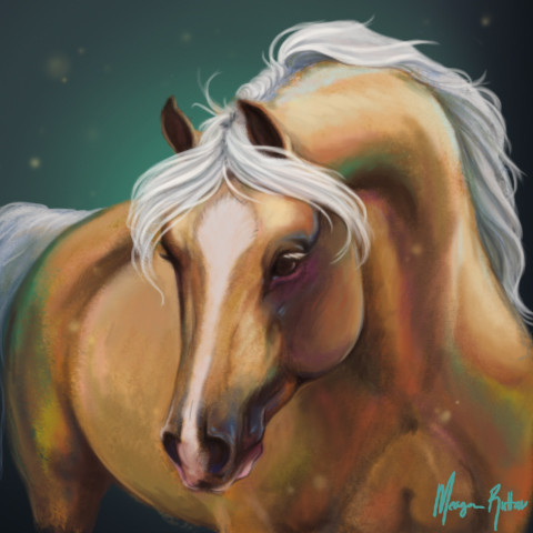 Meagen ruttan pony face 2016 colour study 04