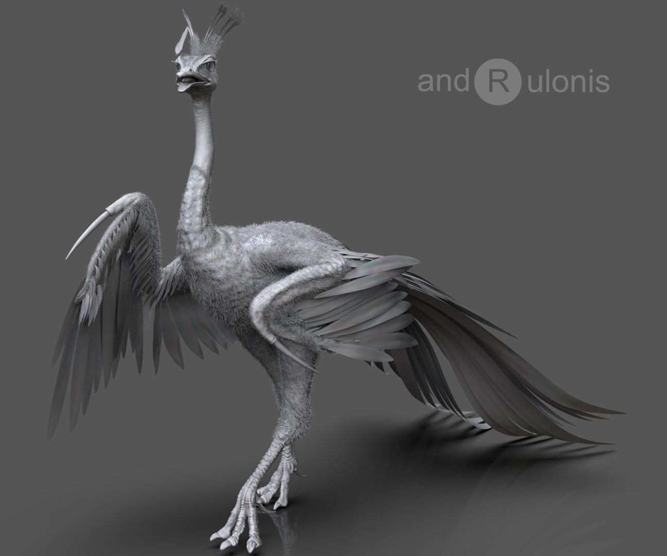 Dariusz andrulonis bird 05