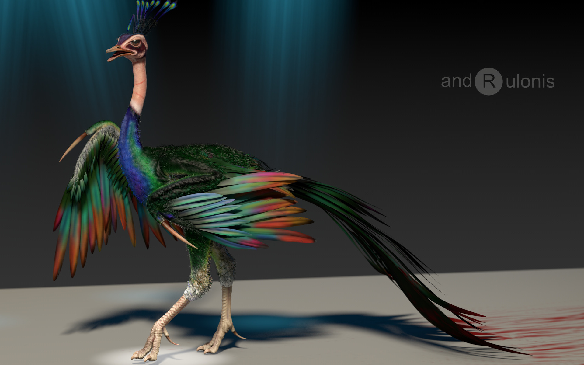 Dariusz andrulonis bird 01