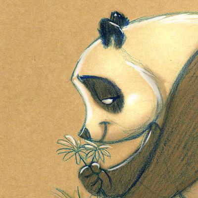 Vipin jacob panda bear