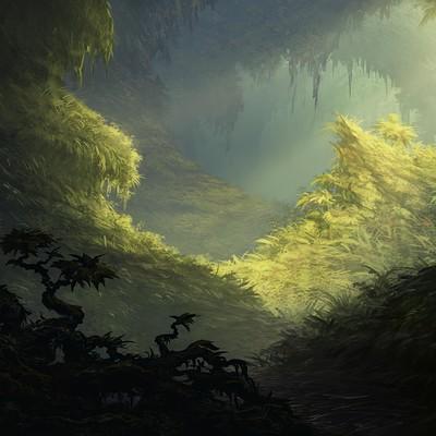 Eben schumacher forest commission jpeg