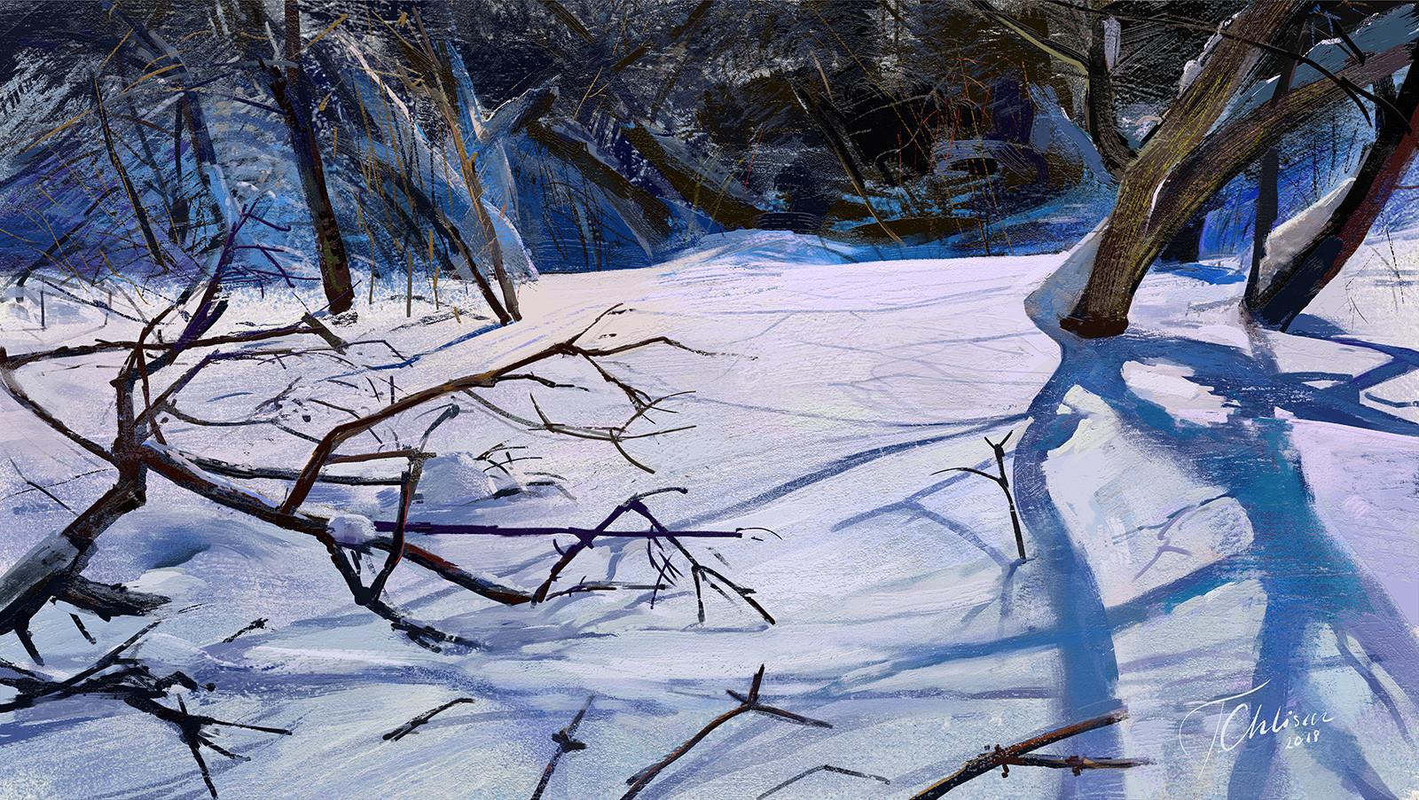 Tymoteusz chliszcz landscape98 by chliszcz