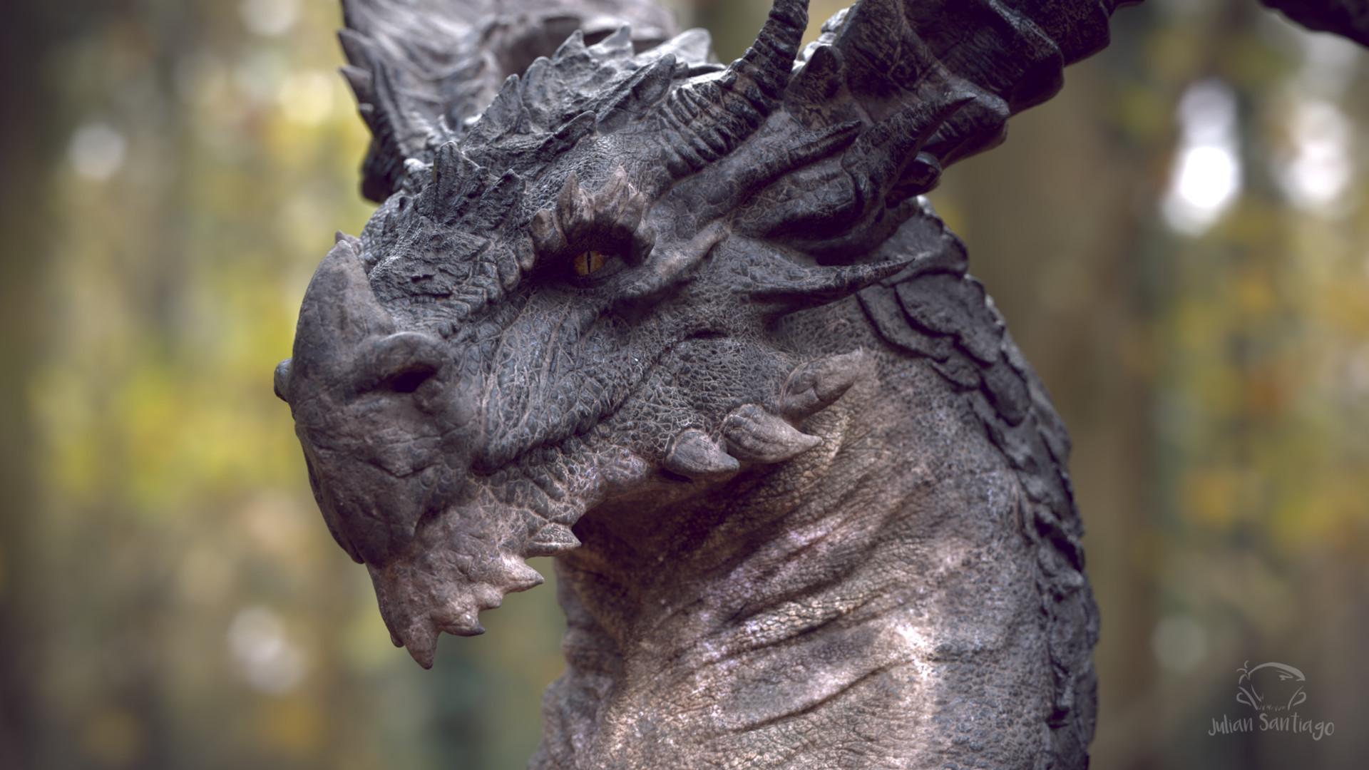 Реальные фото драконов