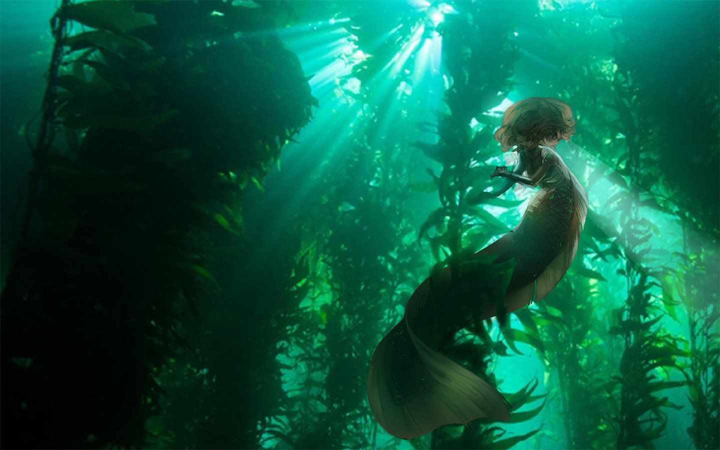 original photo from http://oceana.org/marine-life/marine-science-and-ecosystems/kelp-forest