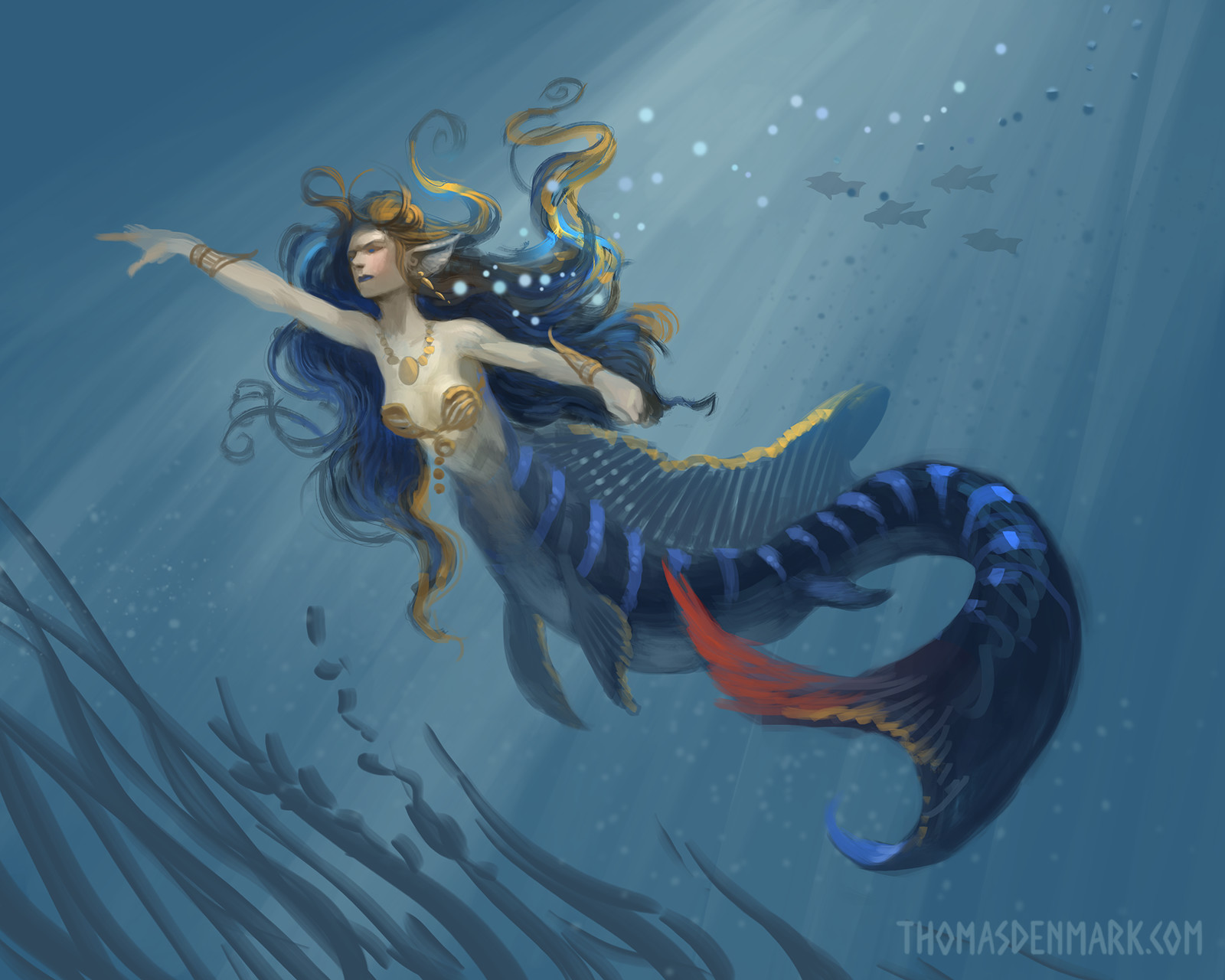 Blue Acara mermaid