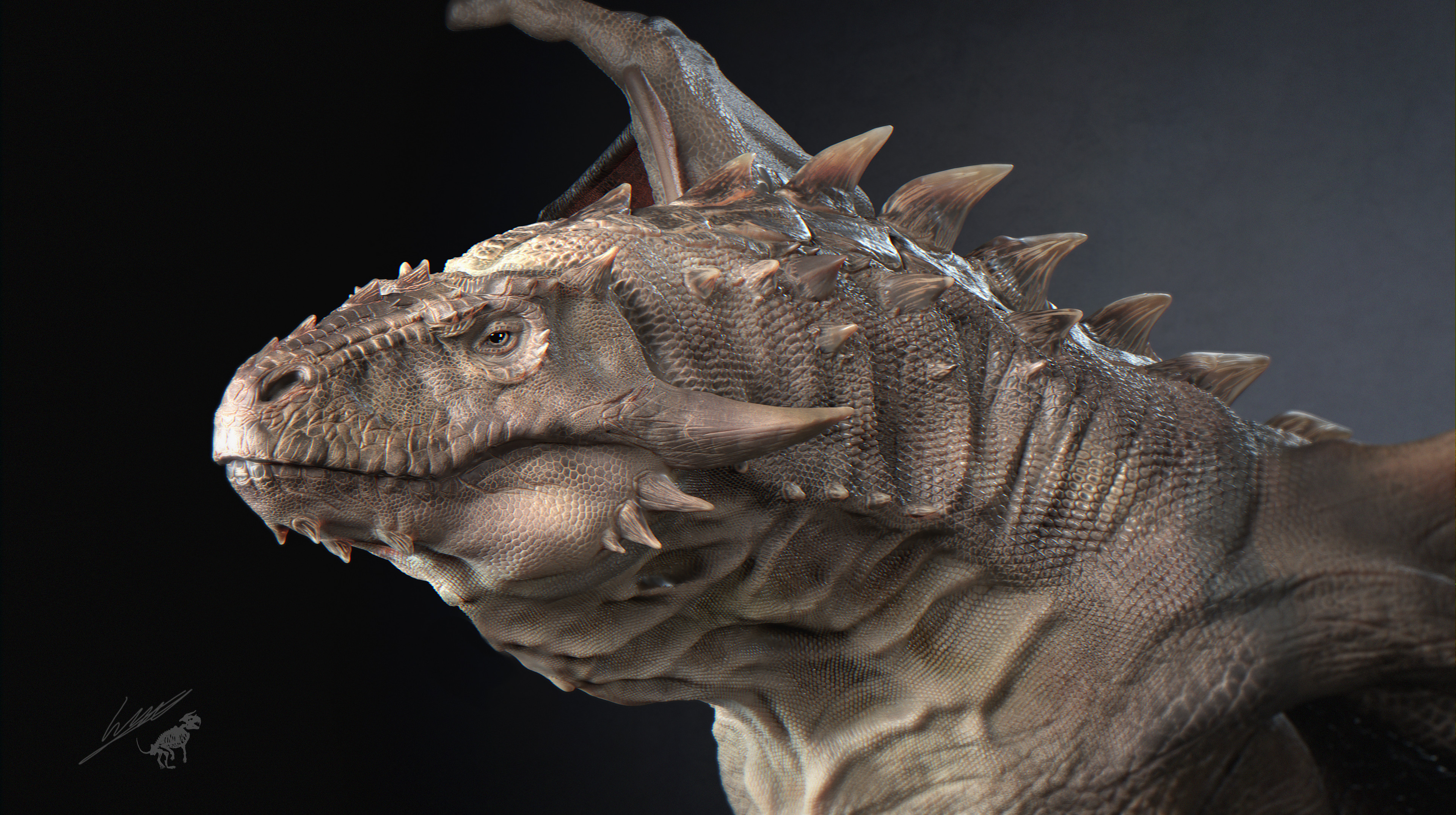 Face close up render