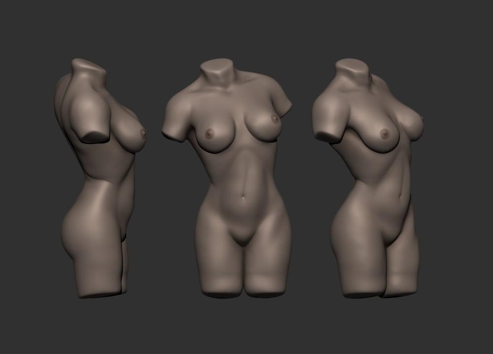 Leo Strauss - Female anatomy practice