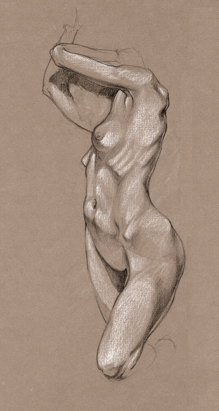 Pencil and white conte on toned paper