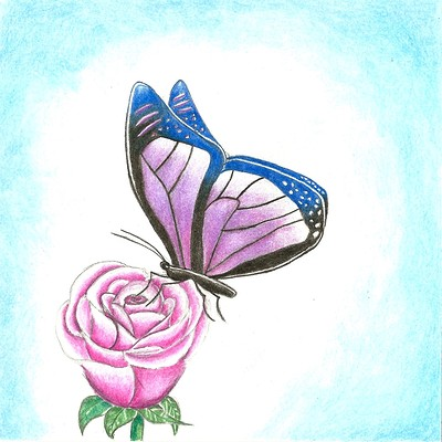 Addyson h butterfly
