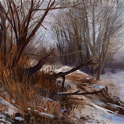 Tymoteusz chliszcz landscape101 by chliszcz