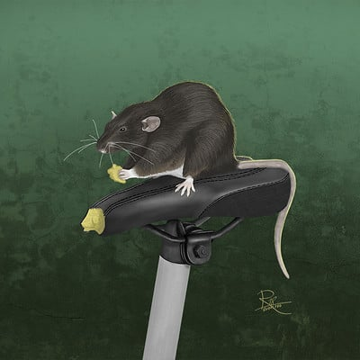 Marc rudolph rat armstrong04