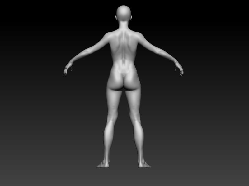 Elmo elbadry side view female anatomy2