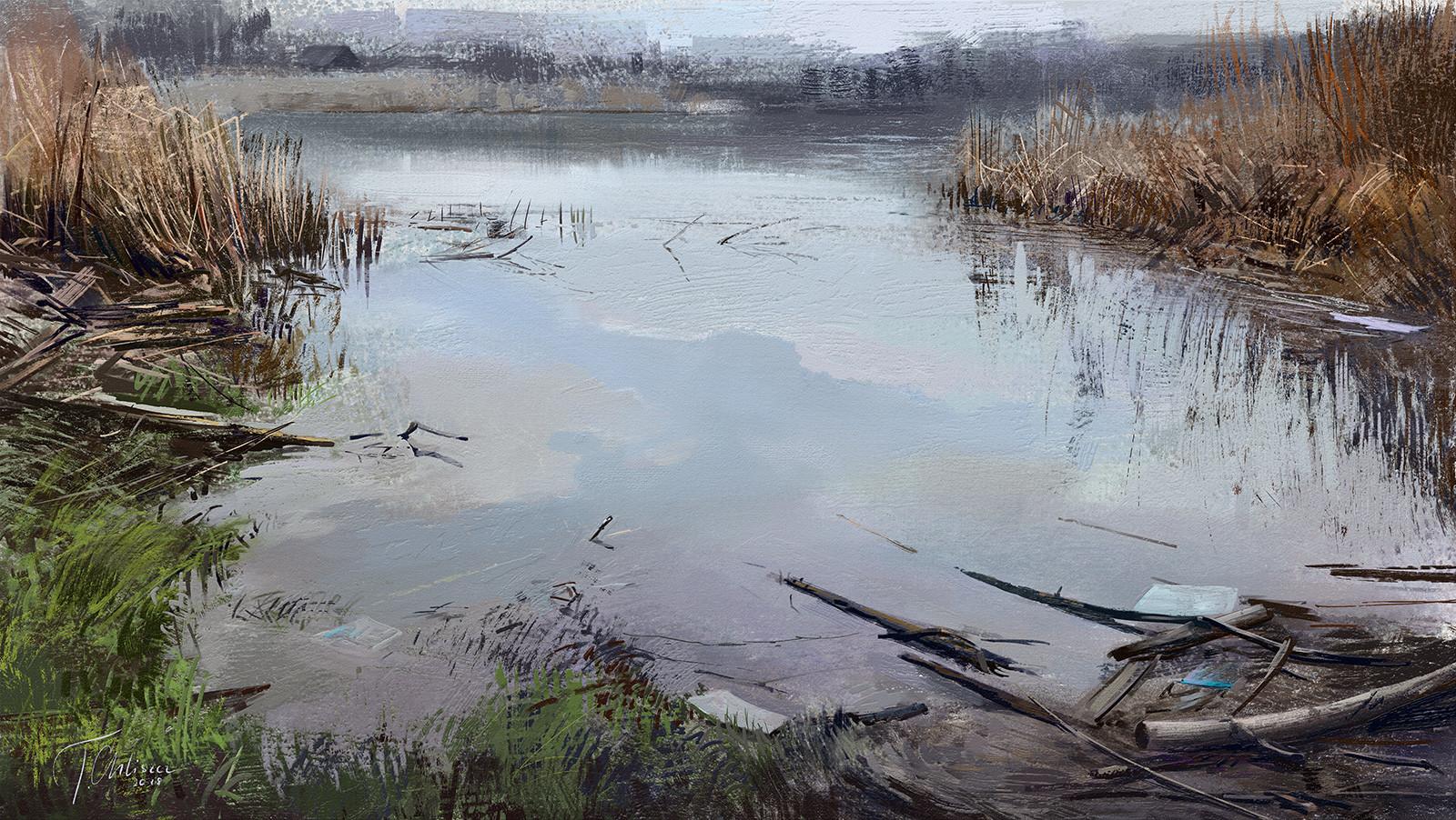 Tymoteusz chliszcz landscape99 by chliszcz