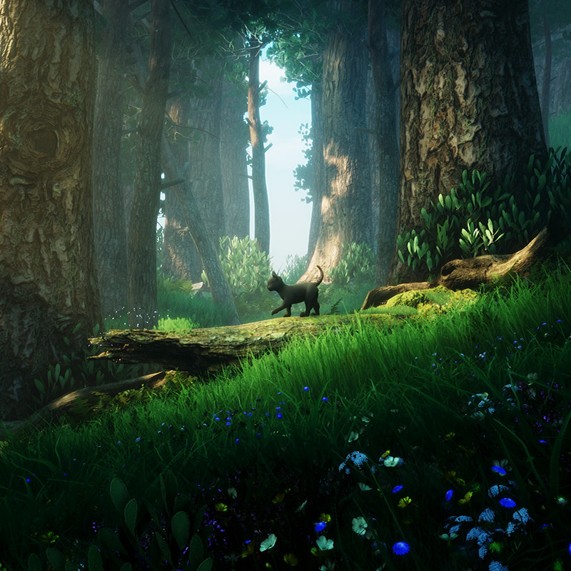 The black cat adventure - UE4 Lighting study - Forest