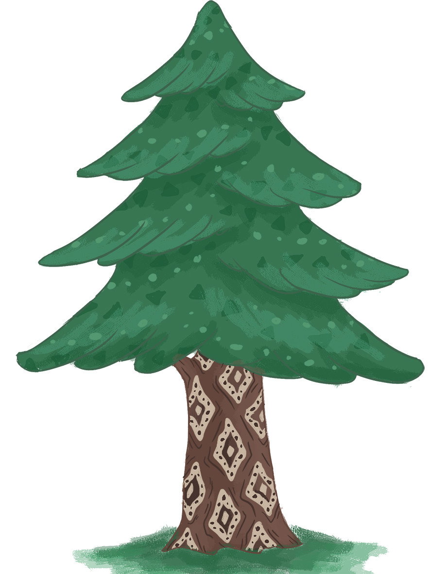 Fir Tree Reference