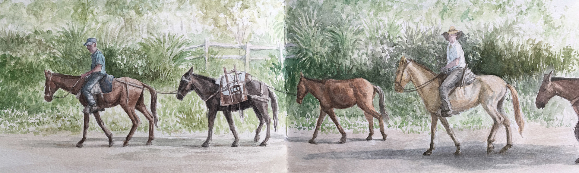 Robert baird colombian sketchbook on the rox to bolivar watercolour