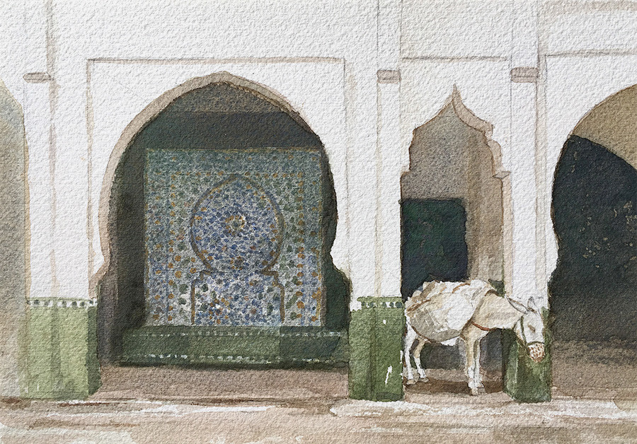 Robert baird moulay idriss donkey watercolour