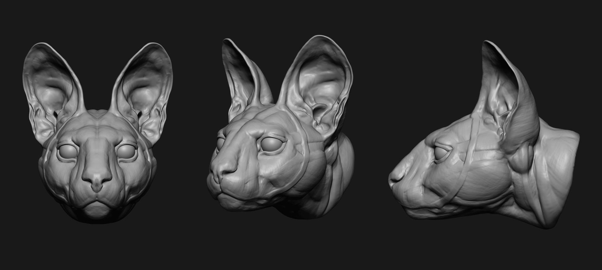 Jess O\'Neill - Freelance 3D Modeler & Texture Artist - Serval Head ...
