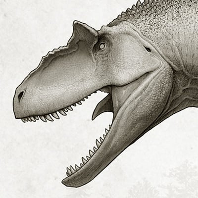 Fred wierum allosaurus copy
