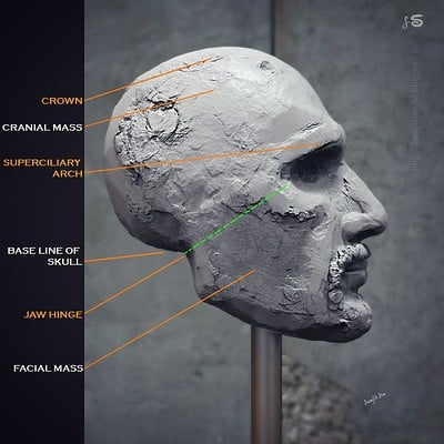 Surajit sen base line human hex surajitsen 31052018 insta
