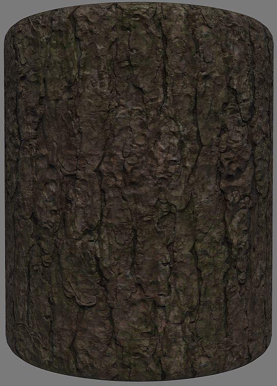 Priscilla firstenberg hemlock bark01