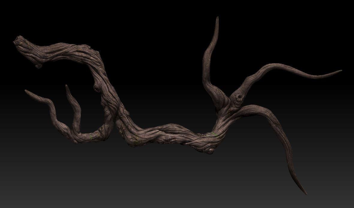 Priscilla firstenberg pri zbrush root01
