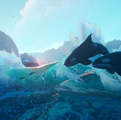 Tyler smith orca11