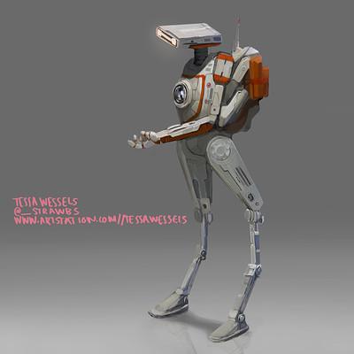 Tessa wessels droid n2 1