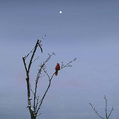 Vincenzo lamolinara a redbird2