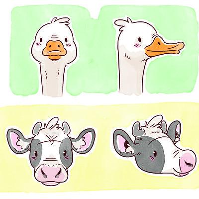 Clemence gregoire vache canard