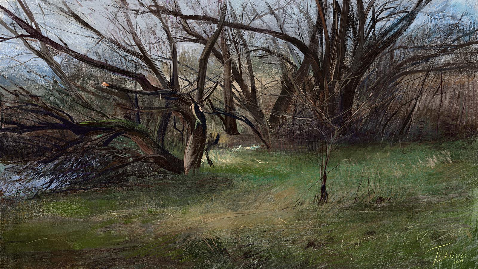 Tymoteusz chliszcz landscape94 by chliszcz