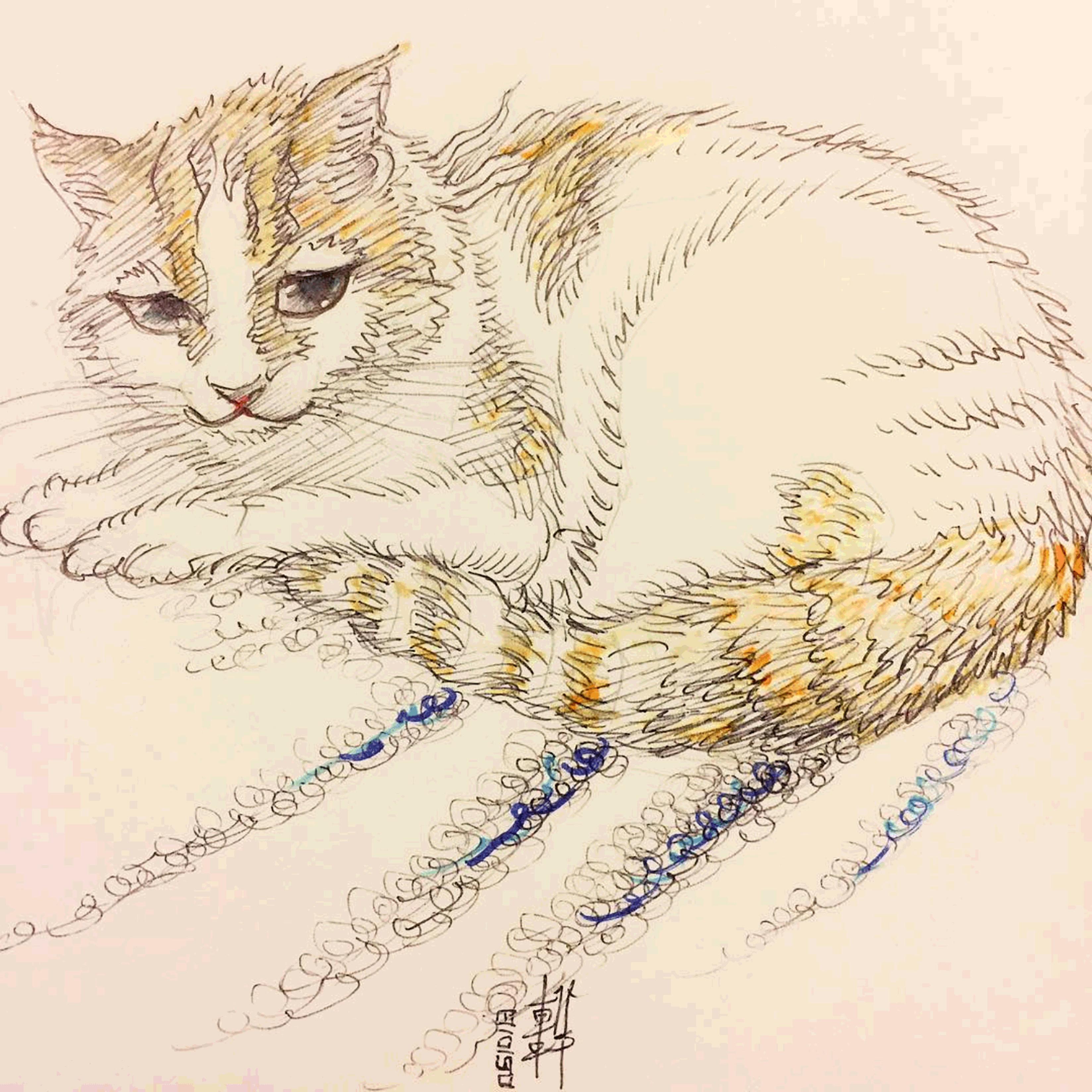 Day 05-10-18 - Sketchy Vi