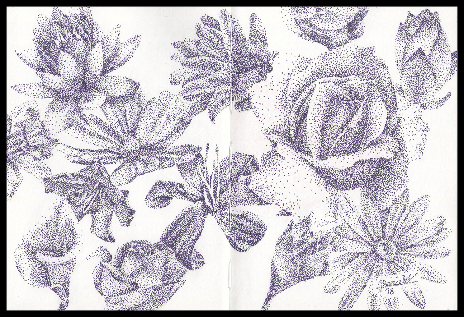 Flower study using pointillism.