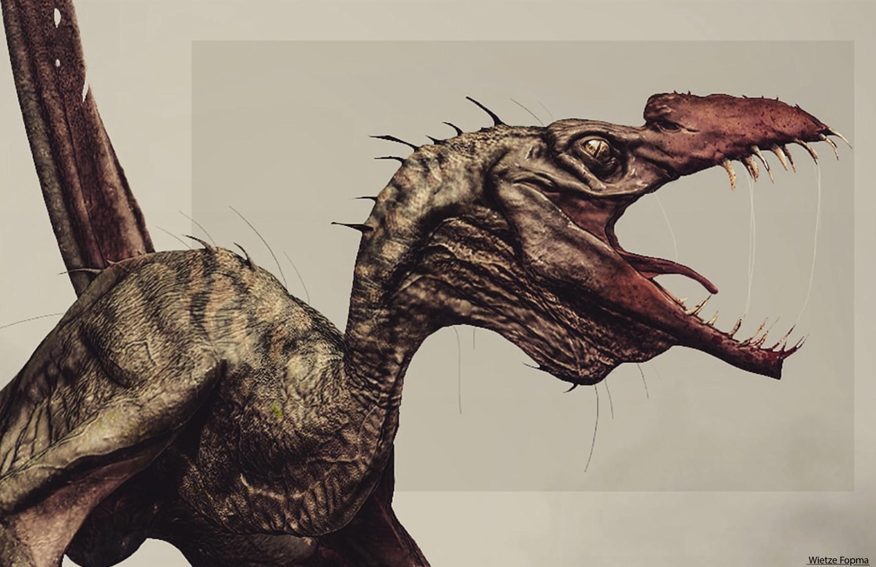 Wietze fopma styracognathus cu