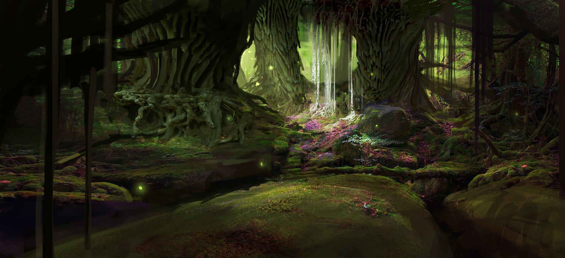 Finnian macmanus forest3