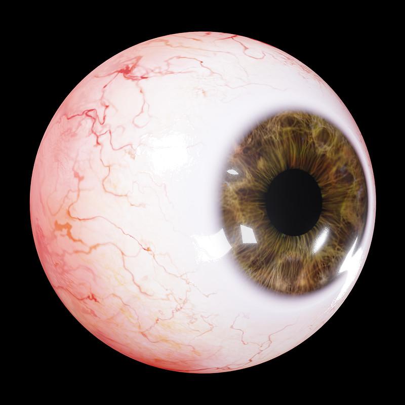 Human Eye Demo