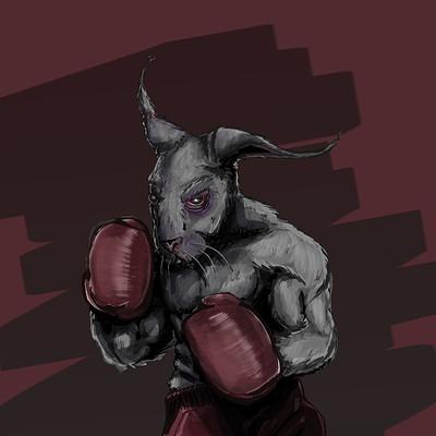 Thomas bouilly boxebunny
