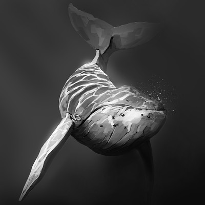Gabriel dos anjos baleia02