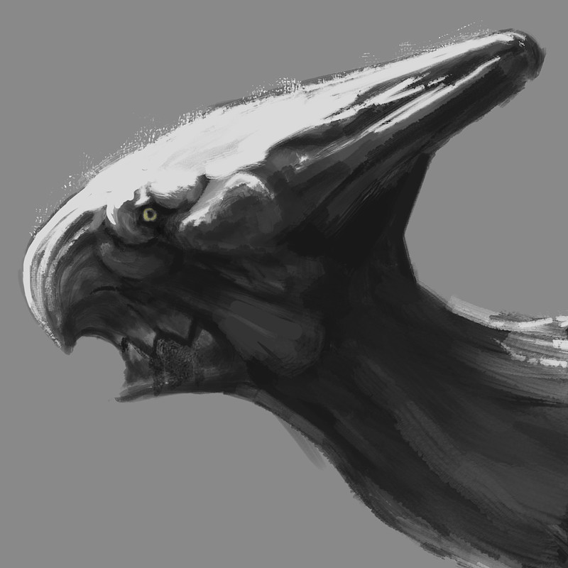 Crusher Head Study