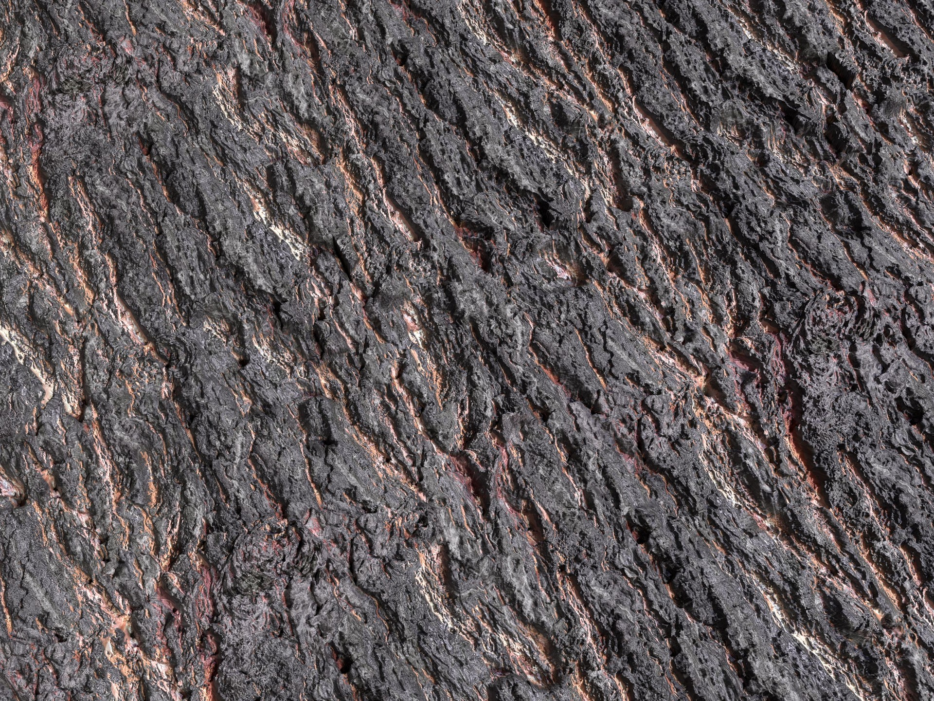 Martin pietras bark scan 03