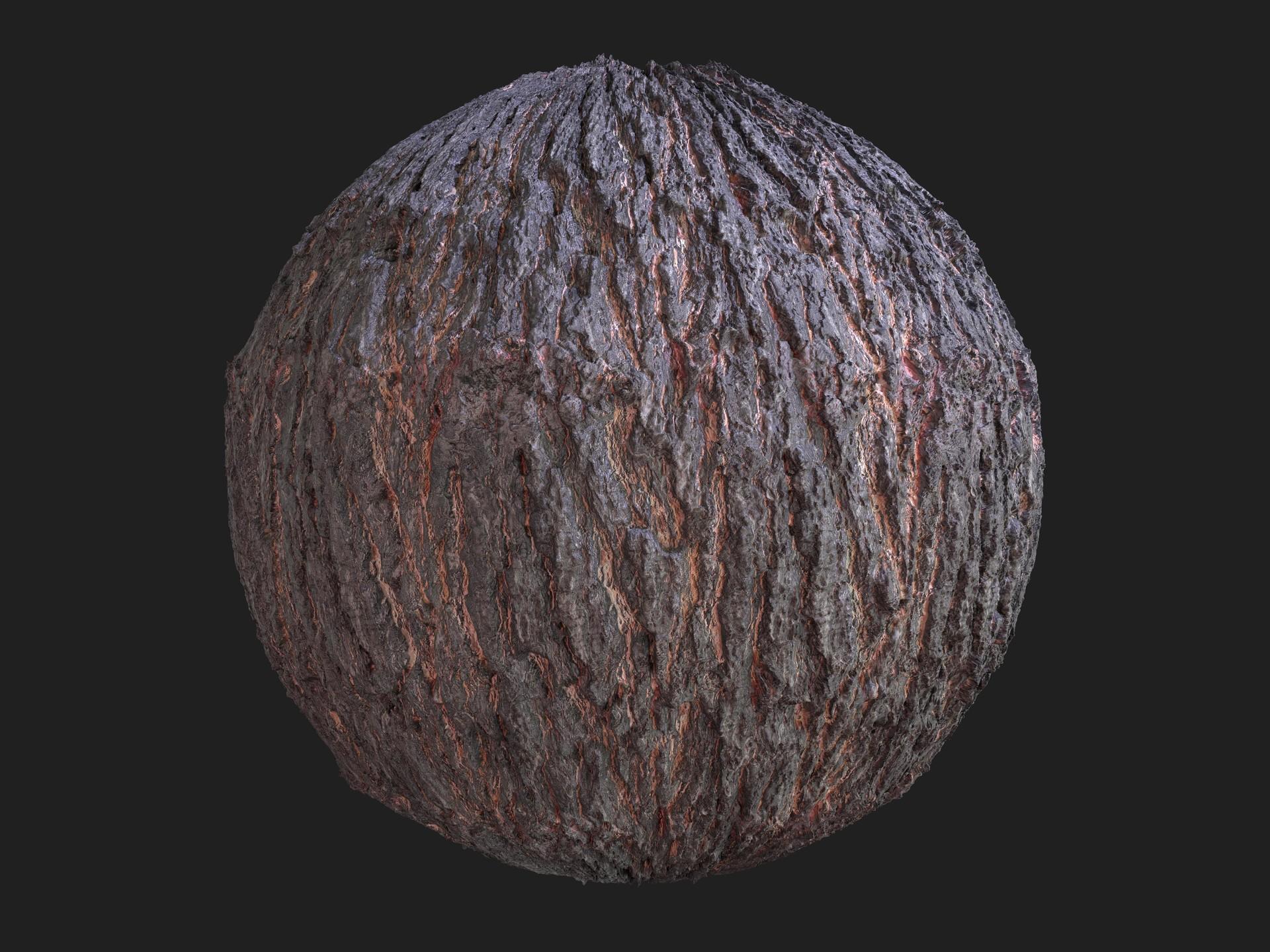 Martin pietras bark scan 01