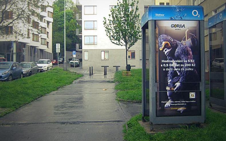 Jan jinda gorila print 02