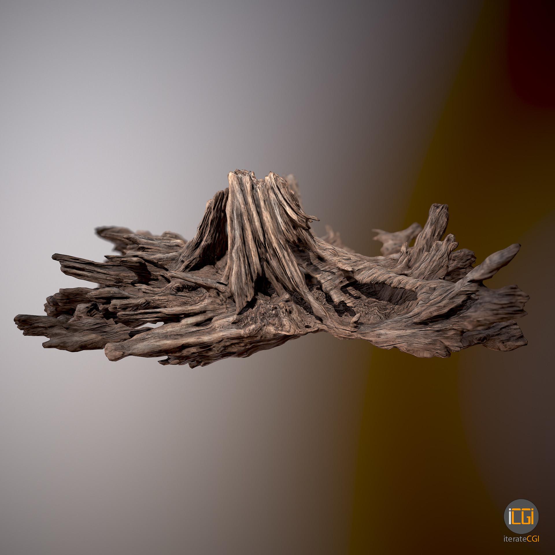 Johan de leenheer driftwood piece cft1 2