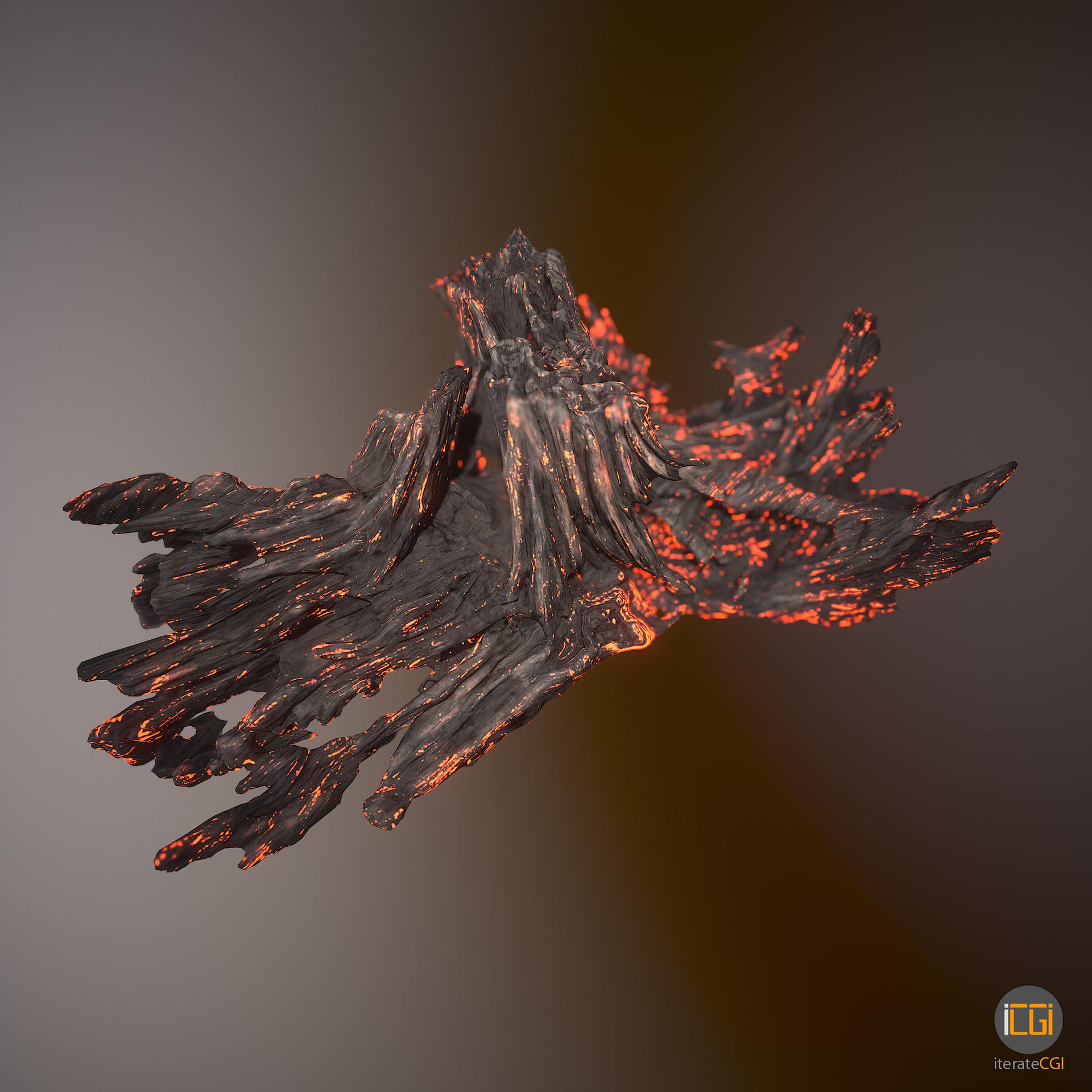 Johan de leenheer driftwood piece cft1 14