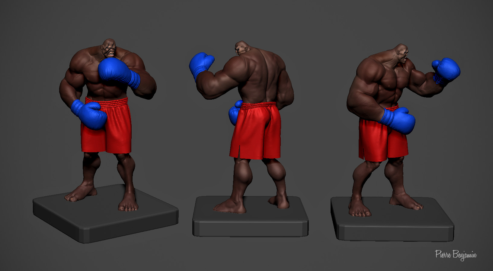 Pierre benjamin boxer newererer
