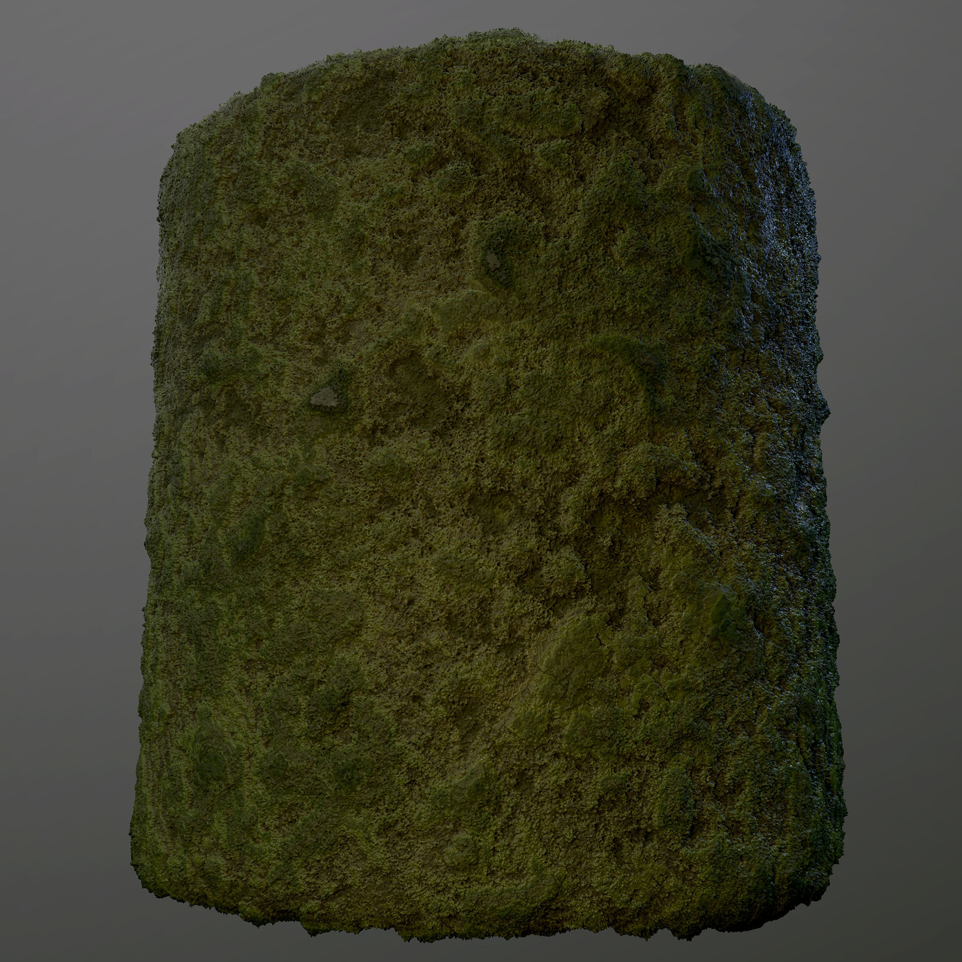 Sebastian schulz moss marmo