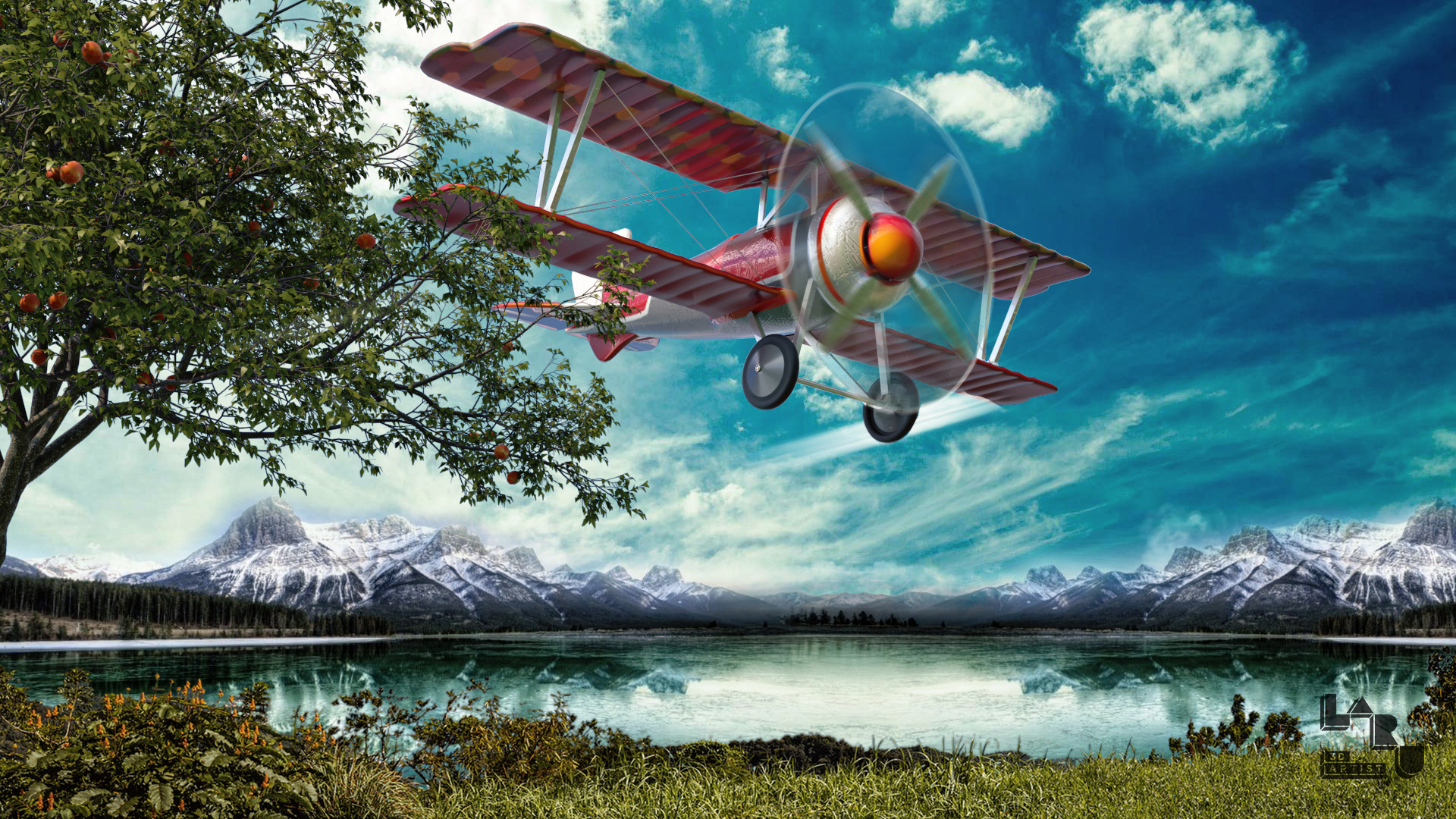 Laru 3d avion1