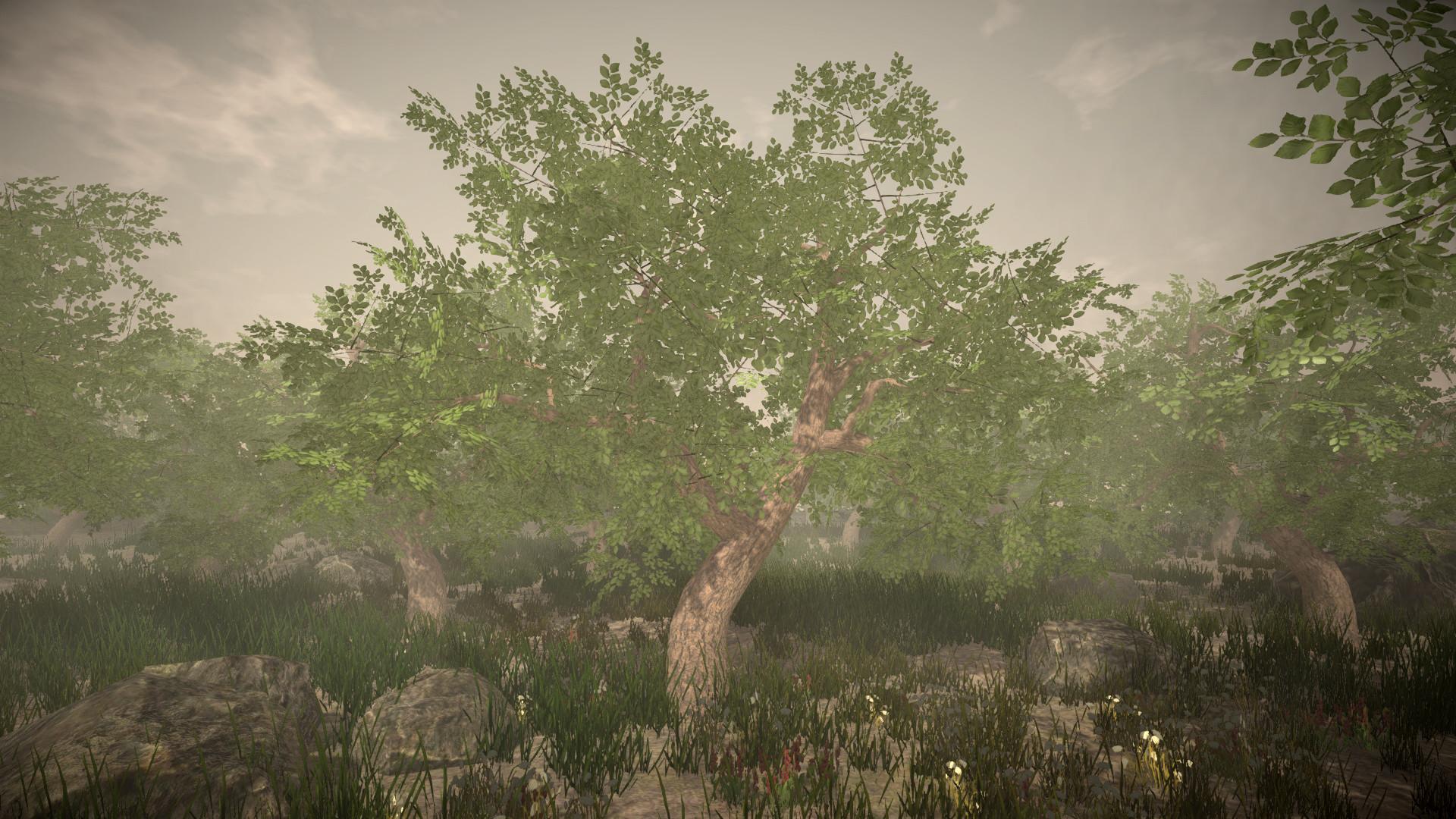 Jordan cameron tree 2
